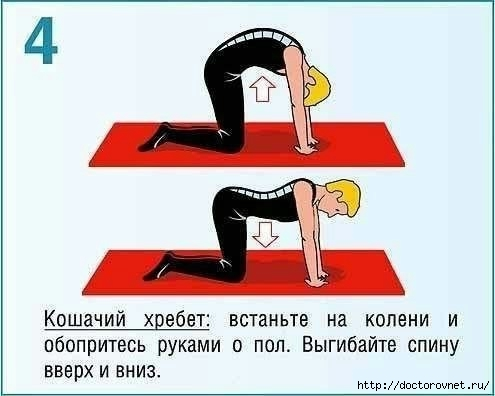 Как исправить осанку упражнения4 (495x396, 69Kb)