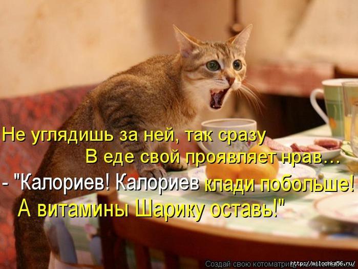 1382543520_kotomatritsa_d7 (700x524, 274Kb)
