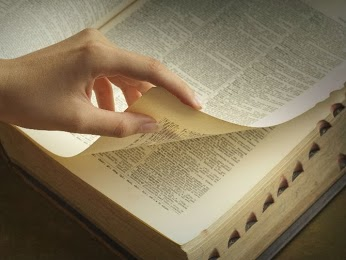 Пополняем свой словарный запас