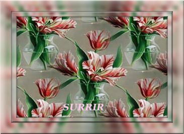 4674007_tuxpi_com_1384135362 (366x266, 66Kb)