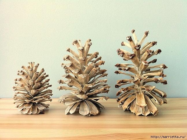 Зимняя классика. Отбеленные сосновые шишки (29) (648x484, 315Kb)