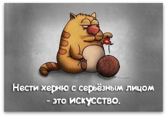 http://img1.liveinternet.ru/images/attach/c/9/106/985/106985371_large_25.jpg
