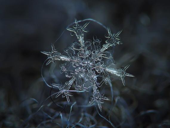 снежинки фото 2 (570x428, 144Kb)