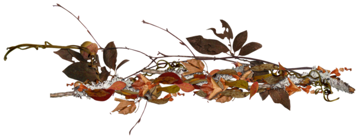 92326704_Carena_Autumn_Crunch_Cluster_4 (699x272, 163Kb)