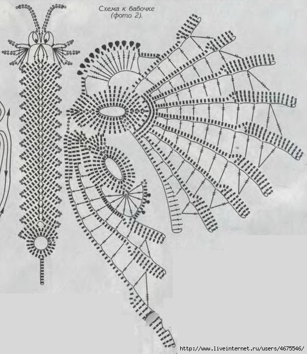 Схема бабочки для ирландского кружева