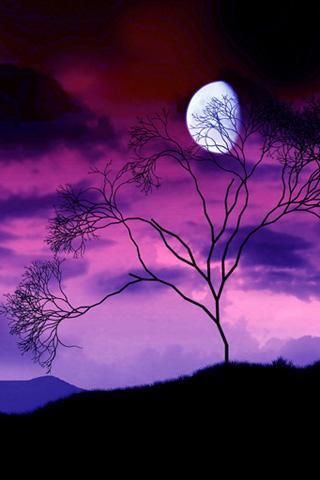 Убывающая Луна (320x480, 18Kb)