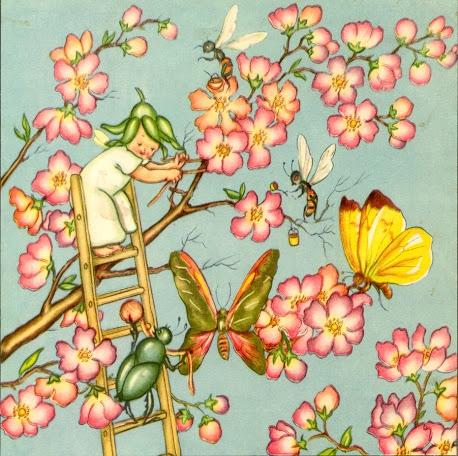 La Fatina dei fiori - 02 (458x456, 236Kb)