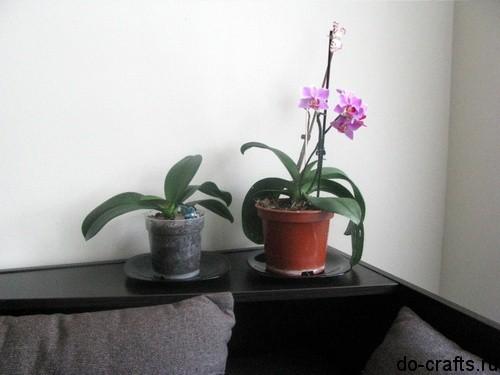 Декор-цветочных-горшков-22 (500x375, 40Kb)