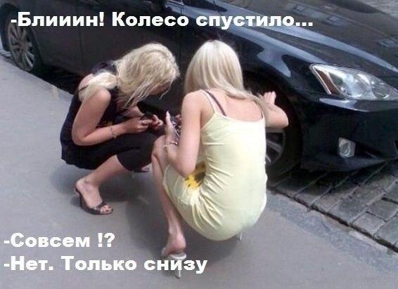 smeshnie_kartinki_138426955442 (566x412, 113Kb)