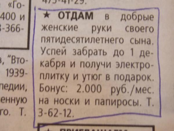 smeshnie_kartinki_138427222491 (600x450, 101Kb)