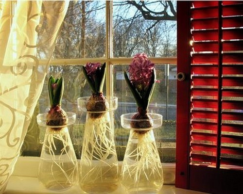 windowsill-decorating-ideas-plants3 (500x400, 140Kb)