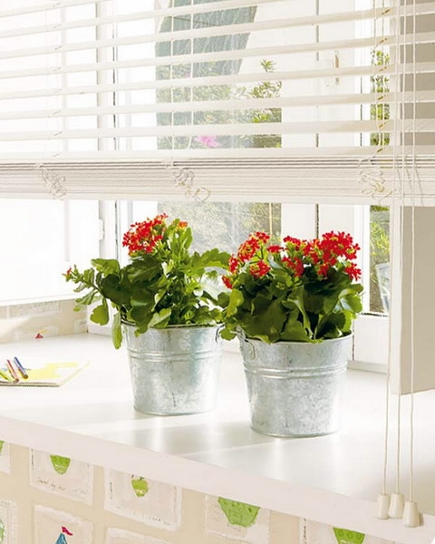 windowsill-decorating-ideas-plants9 (480x600, 137Kb)