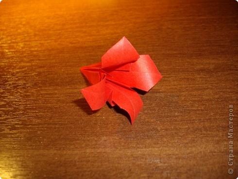 кусудама розочка (12) (490x368, 114Kb)
