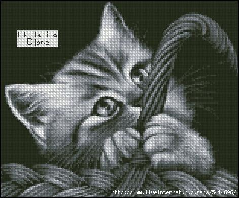 Котенок в корзинке (471x390,