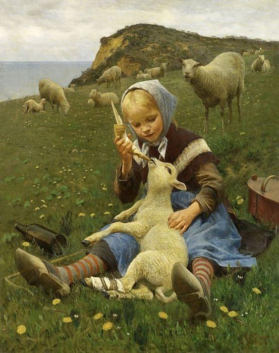 Hans ole Brasen-  Lamb (553x700, 278Kb)