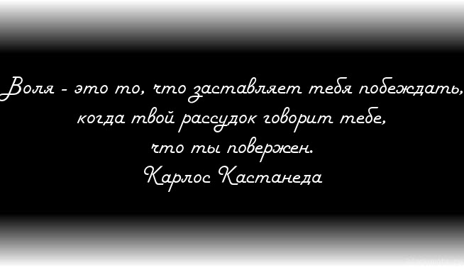 3352215_kakrazvitsiluvoli (654x377, 27Kb)