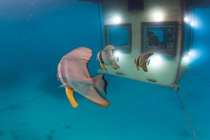 подводный отель Manta фото 3 (680x454, 131Kb)