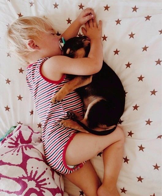 смешные фото детей и животных 3 (529x640, 215Kb)