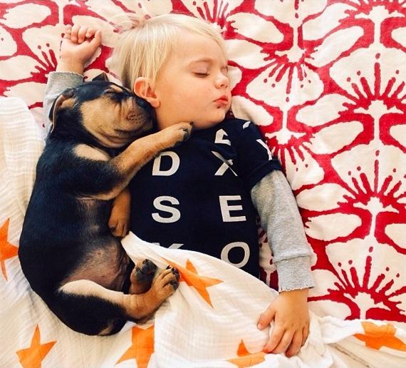 смешные фото детей и животных 5 (570x516, 261Kb)