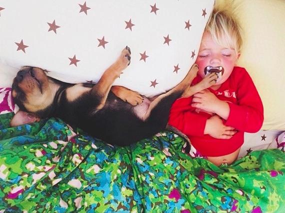 смешные фото детей и животных 9 (570x427, 199Kb)