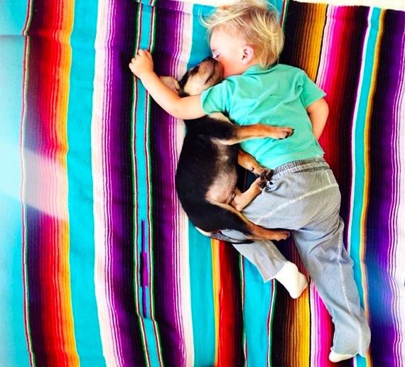 смешные фото детей и животных 10 (570x517, 249Kb)
