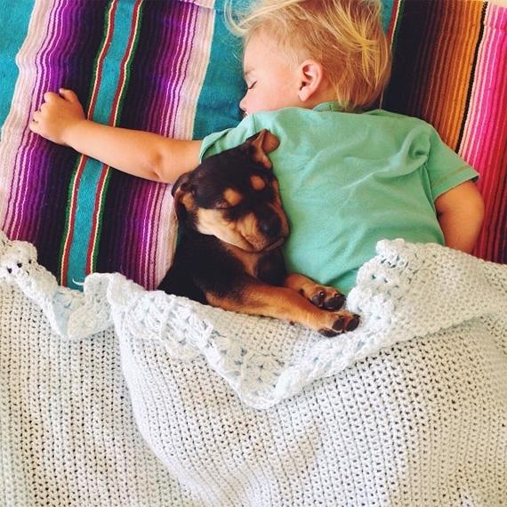 смешные фото детей и животных 11 (570x570, 304Kb)