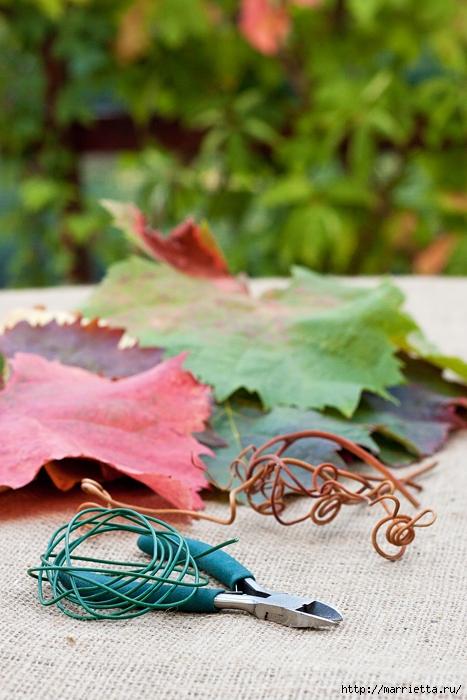 Осенний букет из виноградных листьев (3) (467x700, 263Kb)