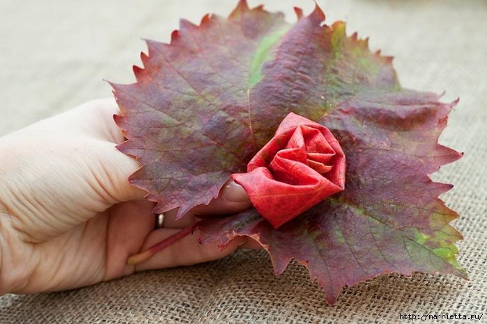 Осенний букет из виноградных листьев (7) (700x466, 268Kb)