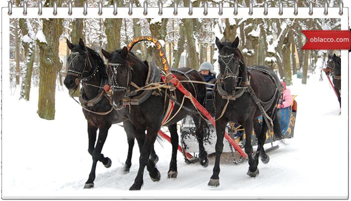 Вязано-шитая лошадка к новому году. Мастер класс/3518263__2_ (700x400, 464Kb)