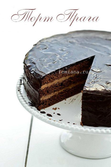 tort praga4 (466x700, 53Kb)