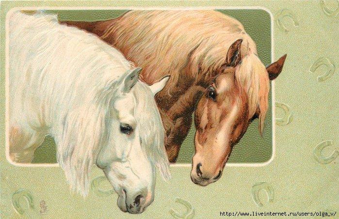 Старинные открытки с лошадьми 59