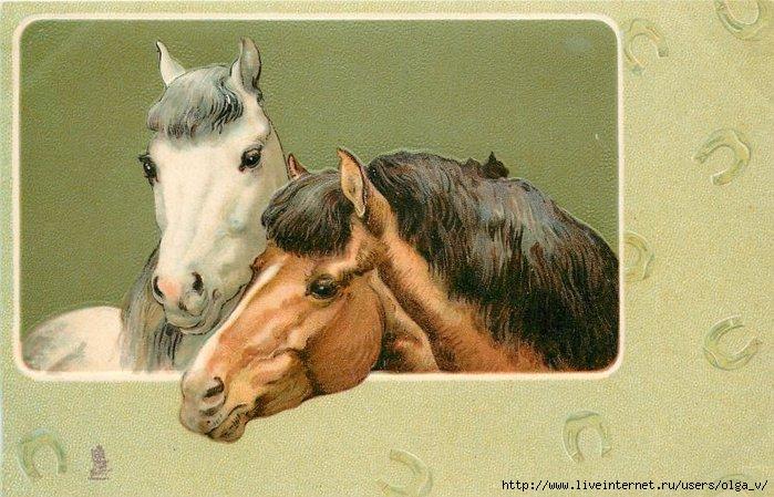 Старинные открытки с лошадьми 41