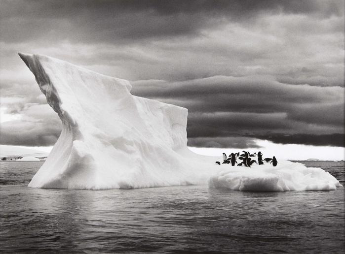928775_icebergsnearpauletislandantarcticaphotobysebastiaosalgado2005 (700x516, 229Kb)