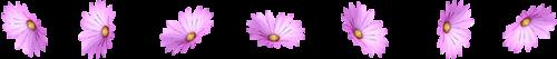 0_8783c_687f584_L (500x53, 32Kb)