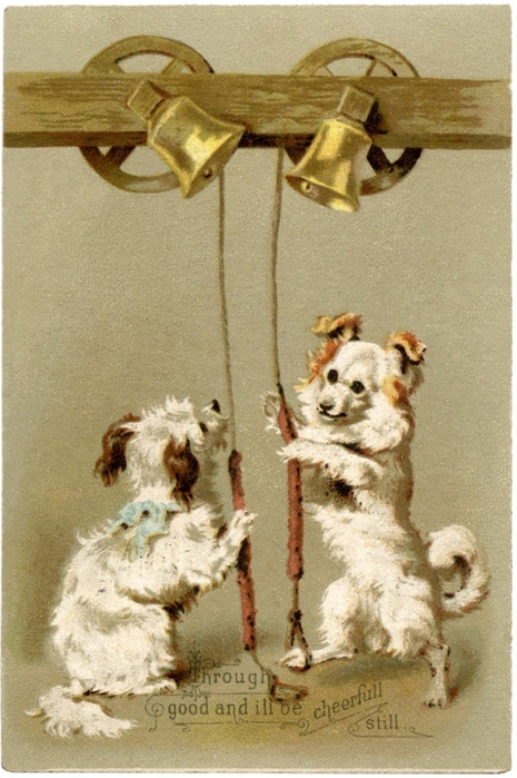 Christmas-Dogs-Picture-GraphicsFairy-681x1024 (465x700, 259Kb)