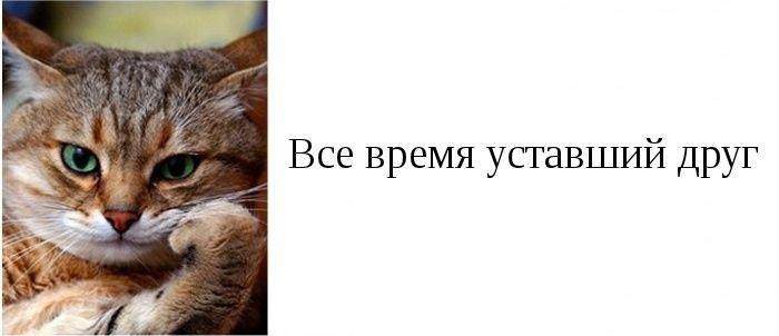 1385322009_1385087266_03 (700x302, 68Kb)