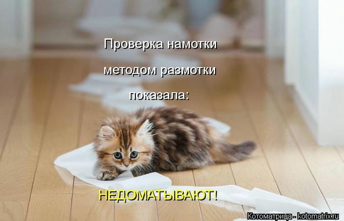 kotomatritsa_3v (700x451, 159Kb)