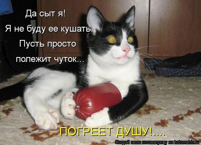 kotomatritsa_UZ (700x504, 227Kb)