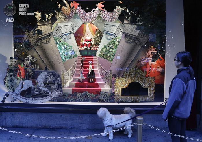 рождественские витрины фото (700x490, 478Kb)