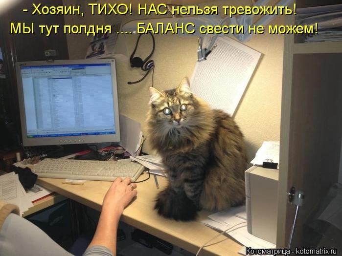 kotomatritsa_lc (700x524, 241Kb)