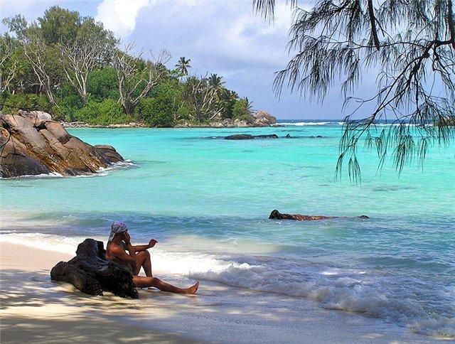 Совокупление на острове фото 177-966