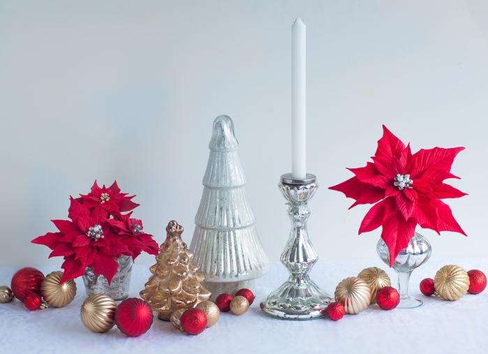 Пуансеттия. Идеи и мастер-класс по лепке рождественской звезды (19) (700x507, 193Kb)