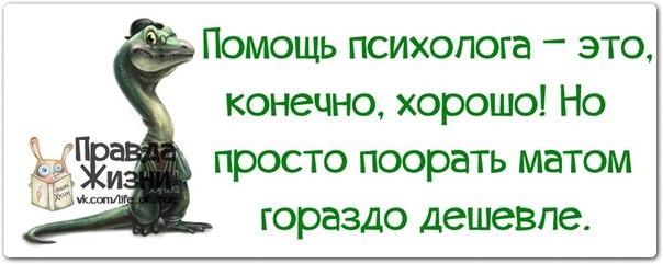 1385492103_frazochki-5 (604x241, 87Kb)