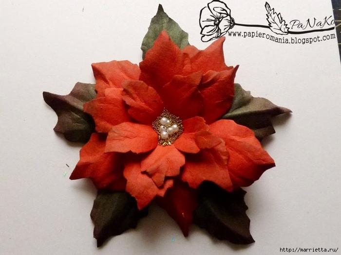 Рождественская звезда ПУАНСЕТТИЯ из бумаги. Шаблоны и мастер-класс (11) (700x525, 214Kb)