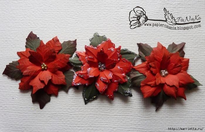 Рождественская звезда ПУАНСЕТТИЯ из бумаги. Шаблоны и мастер-класс (13) (700x450, 243Kb)