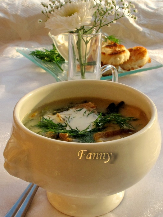 Суп с белыми грибами, телятиной и сухариками (5) (525x700, 222Kb)