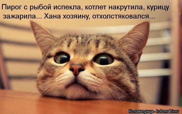 1385896938_cm_20131129_03417_013 (700x438, 150Kb)