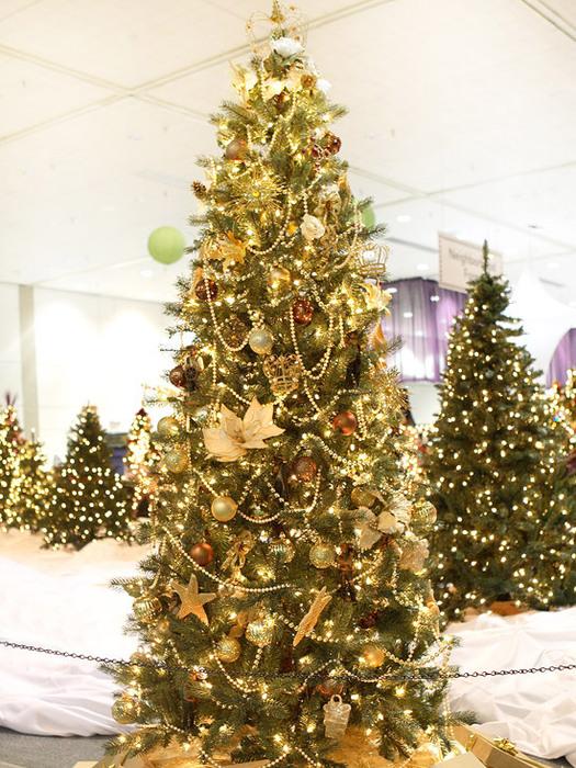 Парад Новогодних елок