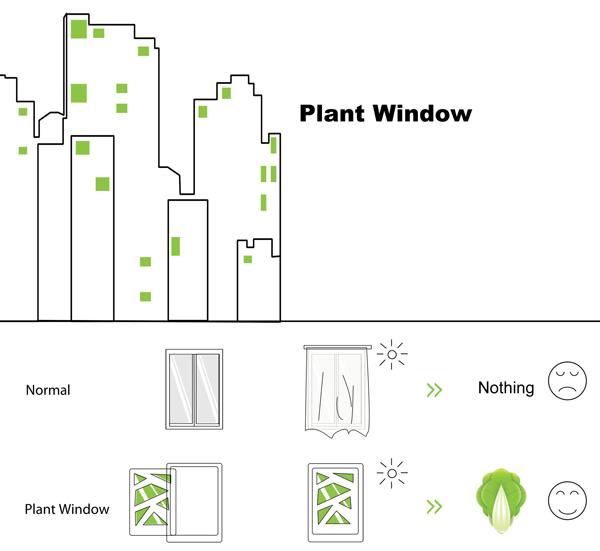 3899041_plant_window (600x551, 41Kb)