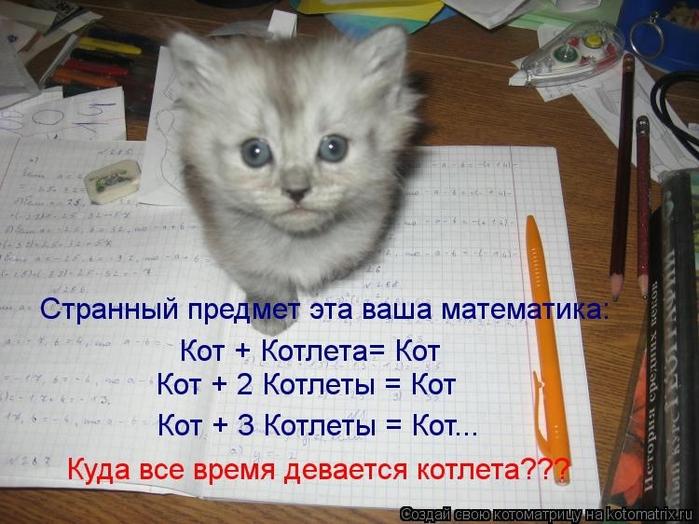 kotomatritsa_MC (700x524, 267Kb)